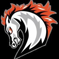 Broncos nehmen Trainingsbetrieb wieder auf